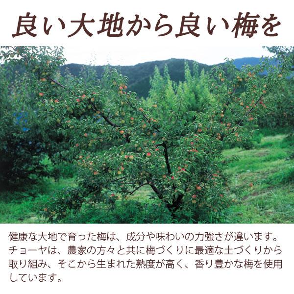 良い大地から良い梅を―健康な大地で育った梅は、成分や味わいの力強さが違います。