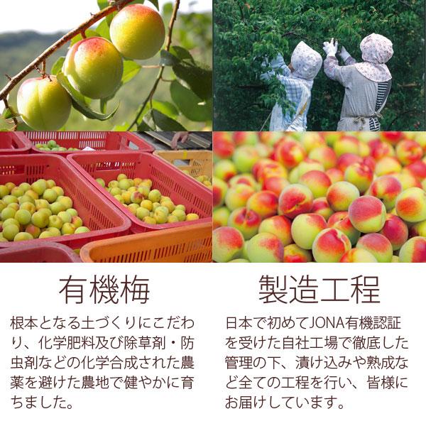 有機梅についてと日本で初めてJONA有機認証を受けた自社工場での製造工程