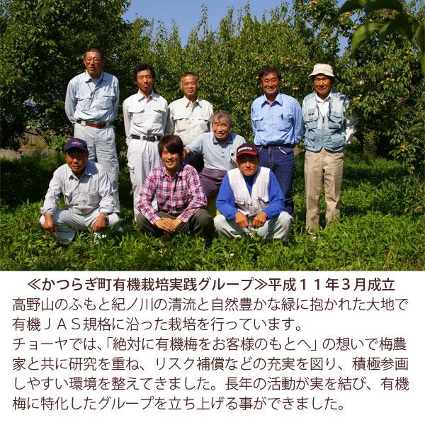 高野山のふもと紀ノ川の清流と自然豊かな緑に抱かれた大地有機JAS規格に沿った栽培を行っています。
