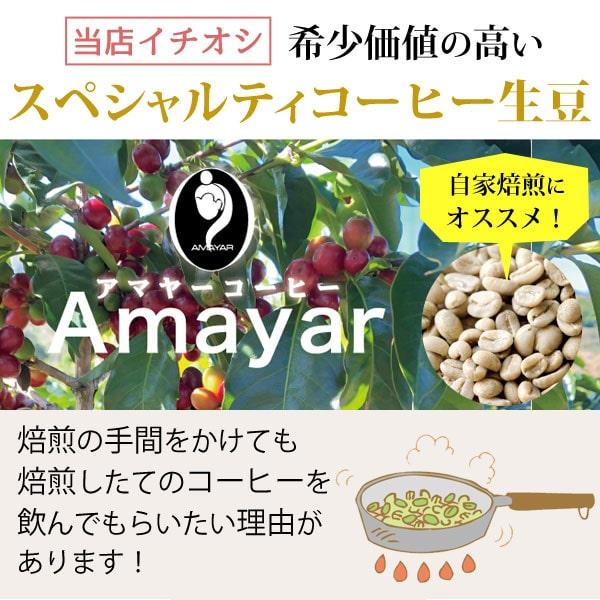 希少価値の高いスペシャルティコーヒー生豆アマヤーコーヒー