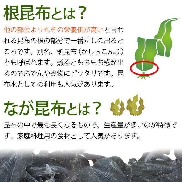 根昆布とは他の部位よりもその栄養価が高いといわれる昆布の根の部分でいちばんだしが出るところです。別名、頭昆布(かしらこんぶ)ともよばれます。長昆布とは昆布の中で最も長くなるもので、生産量が多いのが特徴です。
