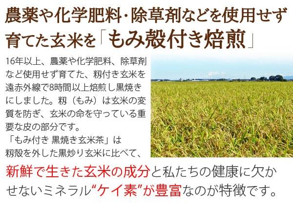 もみ殻のまま遠赤外線焙煎 黒焼き玄米茶 農薬や化学肥料・除草剤などを使用せず育てた玄米をもみ殻付き焙煎しているので新鮮で生きた玄米成分と私たちの健康に欠かせないミネラルケイ素が豊富なのが特徴です