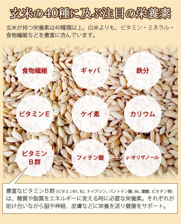 もみ殻のまま遠赤外線焙煎 黒焼き玄米茶 玄米の40種に及ぶ注目の栄養素。白米よりもビタミン、ミネラル、食物繊維などを豊富に含んでいます