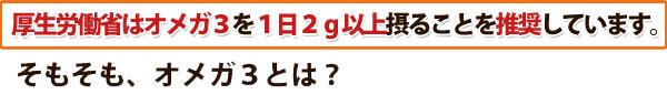 厚生労働省はオメガ3を1日2g以上とることを推奨しています。