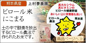 熊本県産 ピロール米 玄米 にこまる