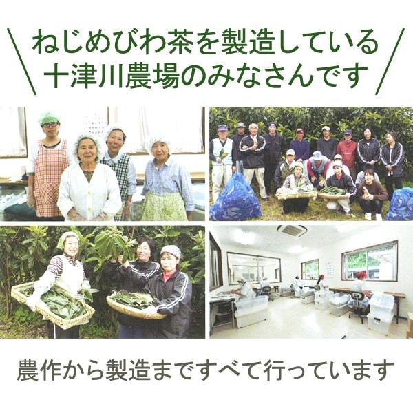 ねじめびわ茶を製造している十津川農場のみなさん