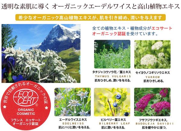 グリーンノート オーガニックUVミルク 希少なオーガニック高山植物エキスが肌を引き締め、潤いを与えます