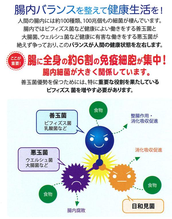 おなかの健康を考え、選び抜かれたビフィズス菌と乳酸菌です。