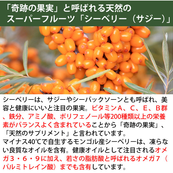 奇跡の果実、天然のサプリメントと言われるシーベリー(サジー)