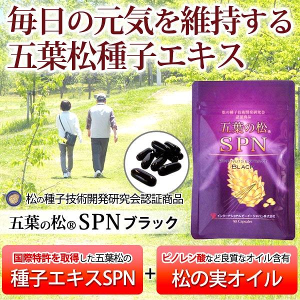 毎日の元気を維持する五葉松種子エキス 五葉の松SPNブラック