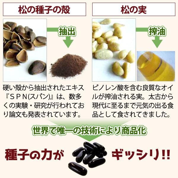 松の種子の殻と松の実を世界で唯一の技術により商品化