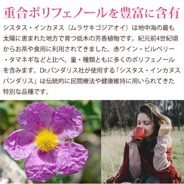 重合ポリフェノールを豊富に含有しているシスタス・インカヌス(ムラサキゴジアオイ)は地中海の最も太陽に恵まれた地方で育つ低木の芳香植物です。紀元前4世紀にはお茶や食用に利用されてきました。赤ワイン、ビルベリー、タマネギなどと比べ、量・種類ともに多くのポリフェノールを含みます。Dr.パンダリス社が使用する「シスタス・インカヌス・パンダリス」は伝統的に民間療法や健康維持に用いられてきた特別な品種です。