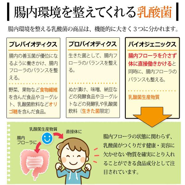 腸内環境を整えてくれる乳酸菌
