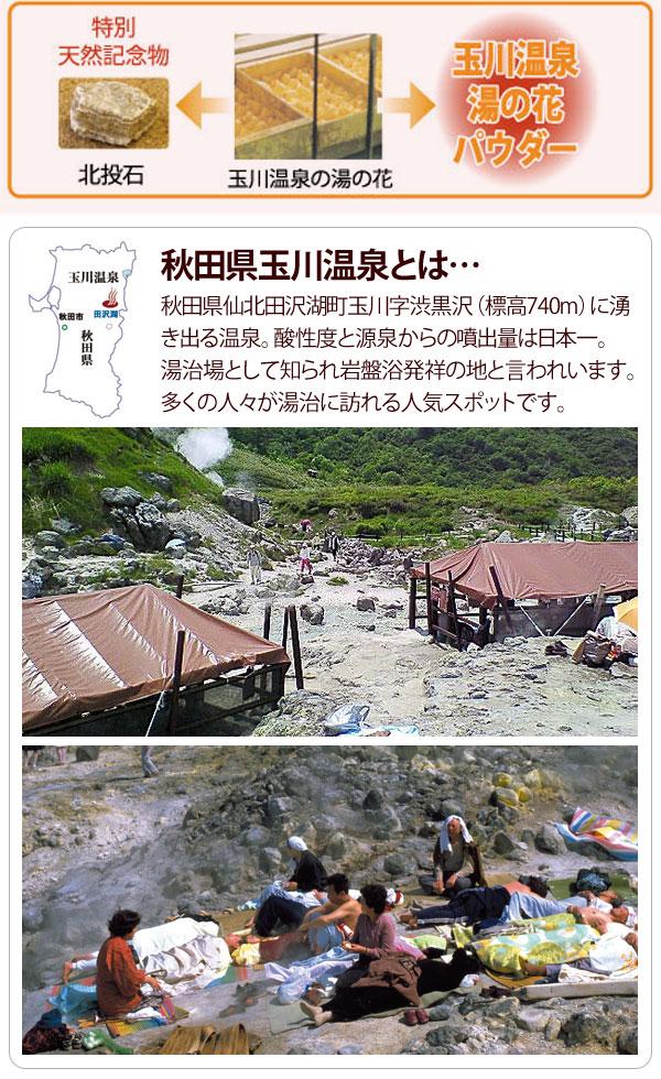 秋田県玉川温泉は秋田県に湧き出る温泉で、酸性度と源泉からの噴出量は日本一。湯治場として知られ、岩盤浴発祥の地と言われています。