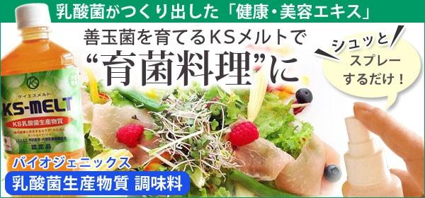 乳酸菌生産物質KSメルト