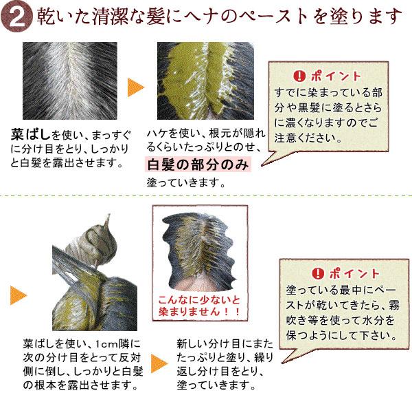 グリーンノート白髪染めの方法2
