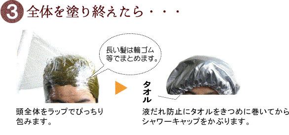 グリーンノート白髪染めの方法3