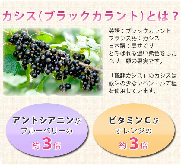 カシス(ブラックカラント)とは?アントシアニンがブルーベリーの約3倍、ビタミンCがオレンジの約3倍